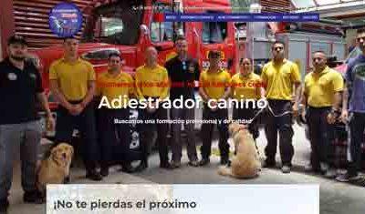 Adiestramiento Canino Valencia